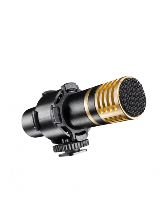 pro Stereo Richtmikrofon Director II DSLR